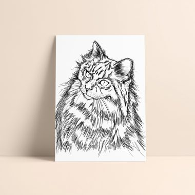 Cat Wall Art Print Rosarts
