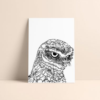 Owl Art Print Rosarts