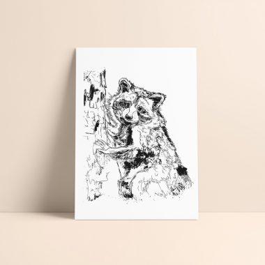 Climbing Racoon Art Print Rosarts