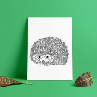 Hedgehog Pen & Ink Art Print