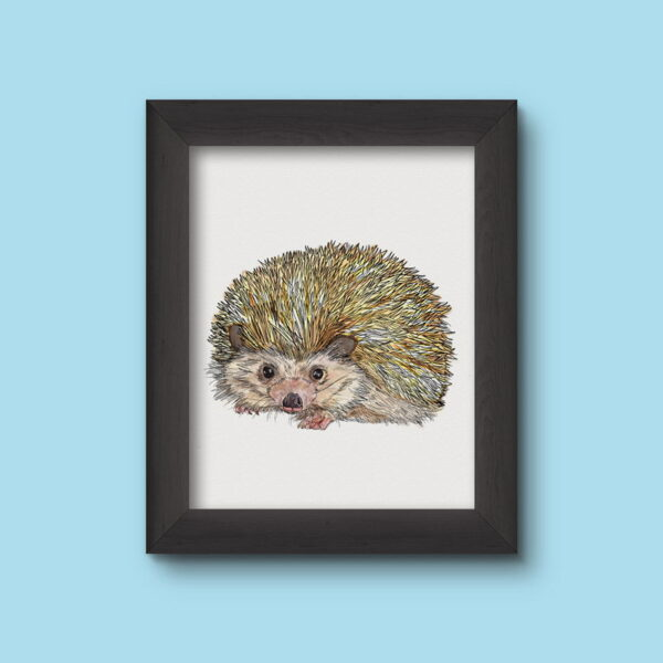Hedgehog Art Print Colour